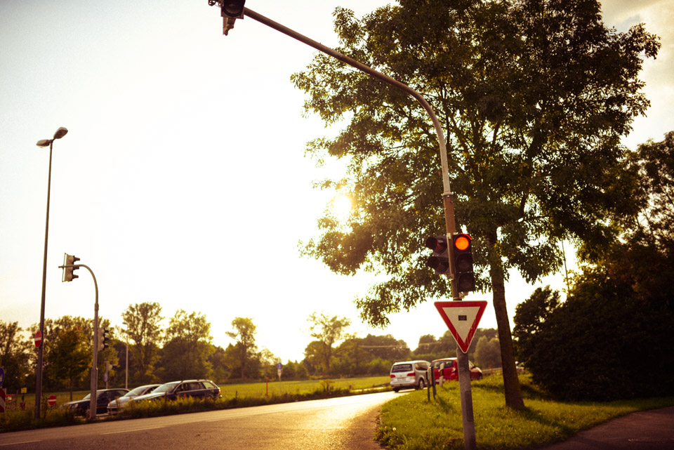 tomweiler-1145