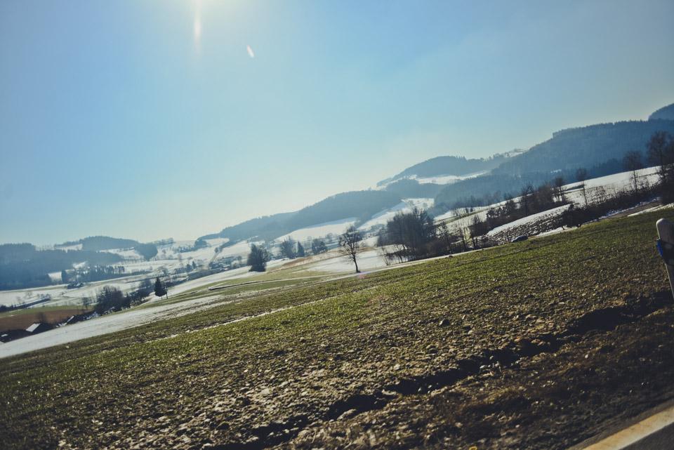 tomweiler-8881
